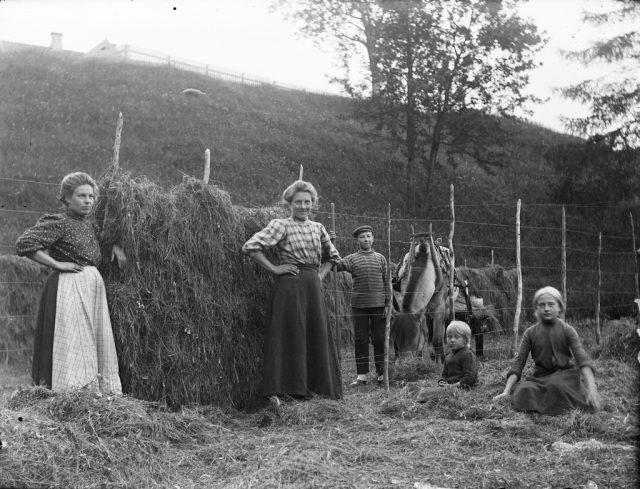 Husmenn og bønder kunne kanskje ha på seg noe som dette, dette er fra 1900tallet, svært tidlig.
